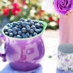blueberries 864628 150x150 Sposoby na rodzinne i aktywne spędzanie wolnego czasu