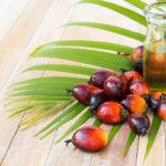 palm oil 150x150 Domowe sposoby na odporność + HOT PRZEPISY