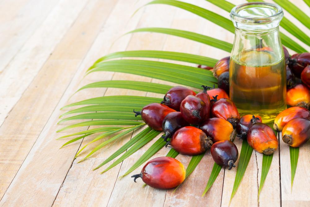 palm oil Międzynarodowy Dzień bez Oleju Palmowego   co z nim nie tak?