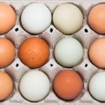 jajka 150x150 Zalecenia dietetyczne dla kobiet w ciąży